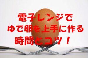 電子レンジでゆで卵を上手に作る時間とコツ!爆発する理由も解説!